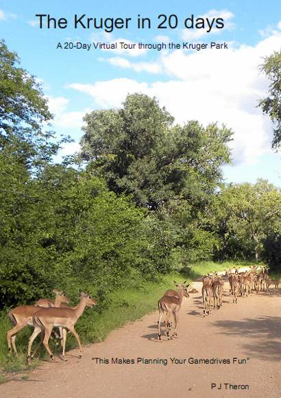 The Kruger Park in 20 Days
